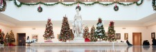 Annual Festival of Trees & Traditions