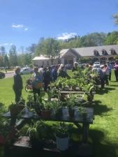 Windsor Garden Mart