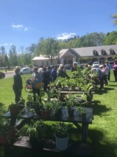 Windsor Garden Club Garden Mart